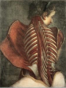 Jacques-Fabien Gautier d'Agoty. Nudirtas angelas. 1746