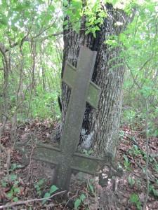 Antoniškių dvaro kapinaitės. Stačiatikių kryžius prie medžio. 2014. Autorės nuotrauka