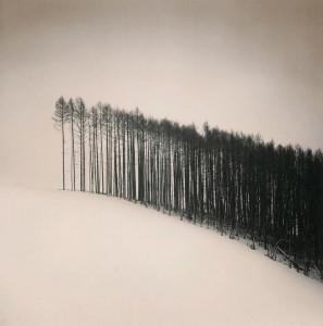 Michael Kenna. Miško pakraštyje, Hokutas, Hokaidas, Japonija, 2004