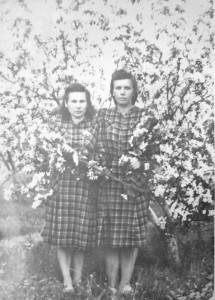 Onutė Andriukaitienė ir Bronislava Ambrazevičienė per obelų žydėjimą. Krasnojarskas. 1952