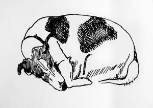 Giedrės Kazlauskaitės piešinys