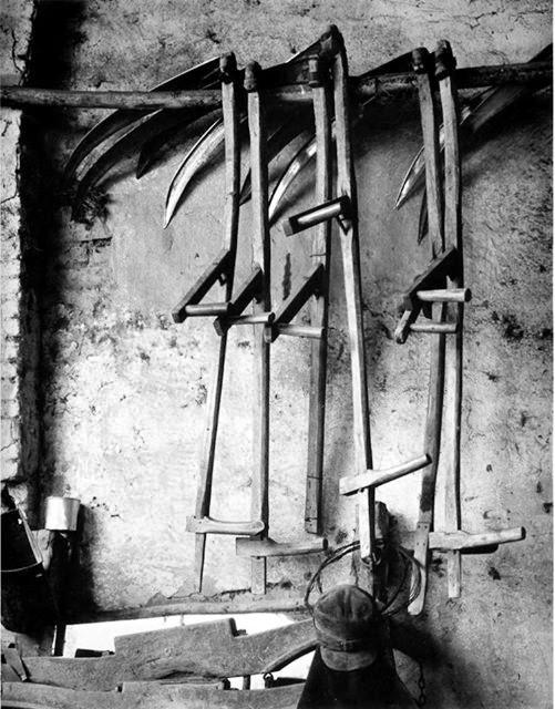 Paul Strand. Dalgiai. 1953