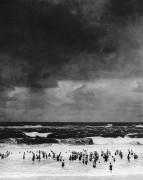 Martin Munkàcsi. Paplūdimys prieš audrą. 1930