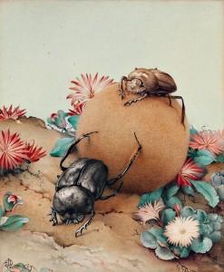 """Edward J. Detmold. Rutulį ridenantys vabalai iš """"Fabre'o vabzdžių knygos"""". 1921"""