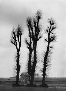 Alfred Ehrhardt. Flamandiškas peizažas.1940