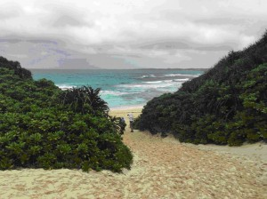Sunajamos paplūdimys, vienas įspūdingiausių saloje. Įdomi detalė, kad net šalčiausiais mėnesiais jūros temperatūra prie Mijako krantų nenukrinta žemiau 20 laipsnių.